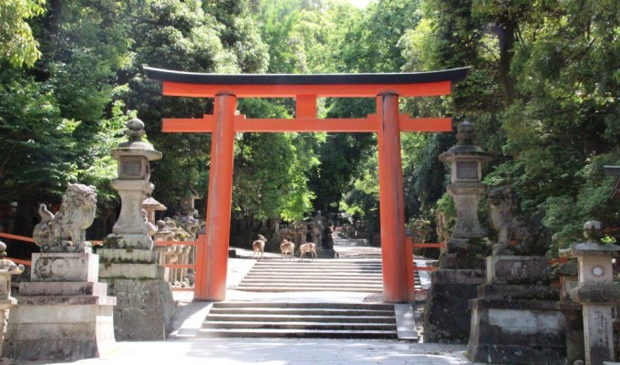 [Touch NIPPON Tourism in 奈良]世界遺産・春日大社の朝拝