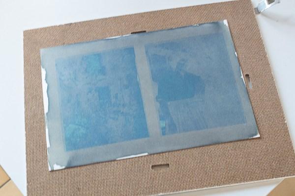 Cyanotype 6
