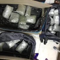 """السلطات الأمنية بمطار عدن توقف مسافر بحوزته 19 كيلو من القات """"المسحوق"""""""