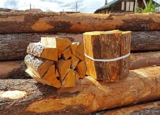 Дрова в загородный дом – в стране выросли продажи полезных ресурсов