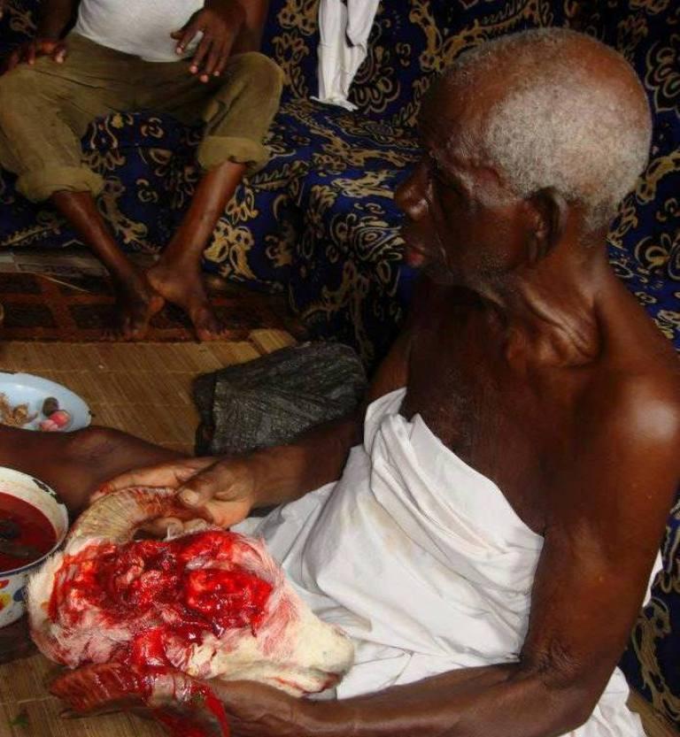 Blood Sacrifice To Ifa