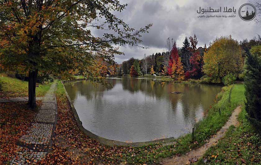 غابة اتاتورك اسطنبول Atatürk Arboretumu