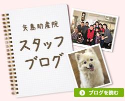 矢島助産院ブログ