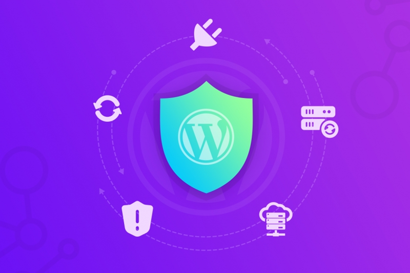 7 Steps to secure your WordPress website