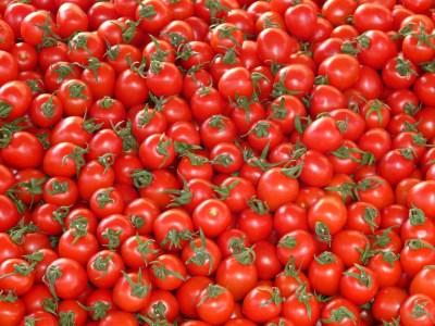 tomatoes-73913_1280