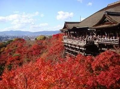 京都駅から清水寺のアクセス方法でバスや地下鉄、タクシーでの行き方です。