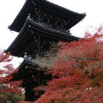 京都の紅葉時期、見ごろは何月?2016最新!観光名所ランキング