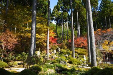 sightseeingtourism_sanzenin_002