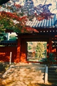 sightseeingtourism_tofukuji_004