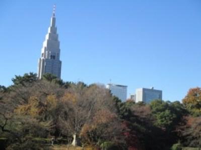 新宿御苑の紅葉2015見頃の時期と秋のデートコースについて調べました。