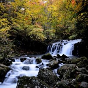 養老渓谷の紅葉の見ごろ時期と名所スポットおすすめコース