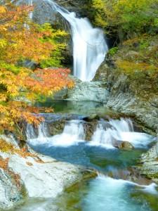 autumn_leaves_yourroukeikoku_2015_003