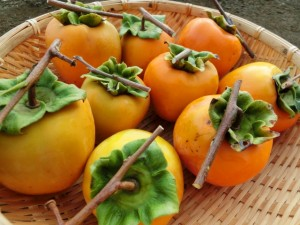 dried_persimmons_006