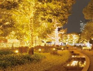 東京ミッドタウンのイルミネーションの点灯時間と混雑状況です。