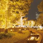 東京ミッドタウンのイルミネーション2017。点灯時間と混雑状況