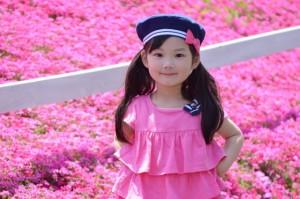 fuji_phlox_004