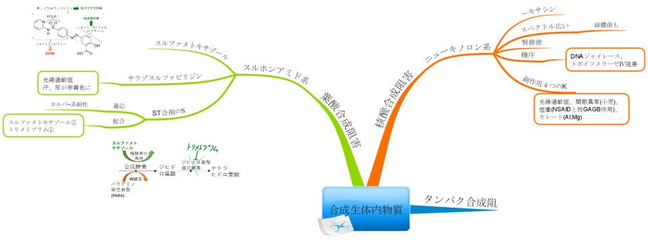 抗菌薬 核酸合成阻害 葉酸合成阻害 マインドマップ
