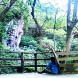 屋久島はじめてにぴったり!【2泊3日】人気のトレッキングモデルコース