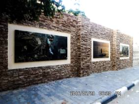 We also have a special place on our street with amazing photographs on the walls and surrounded by other gorgeous little rocks pinned on the walls.