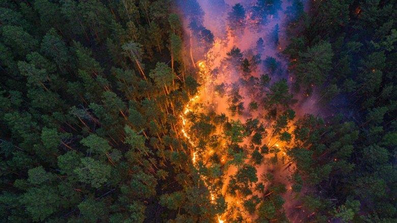 Krasnoyarsk fires