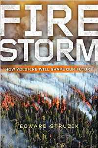 Fire Storm book cover
