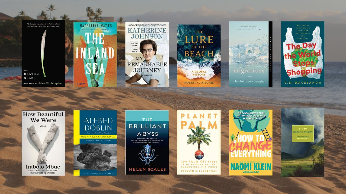 A collection of book covers over an image of a beach
