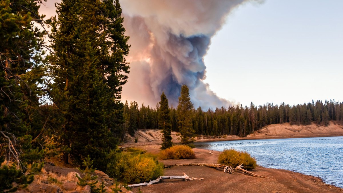 Yellowstone National Park fire
