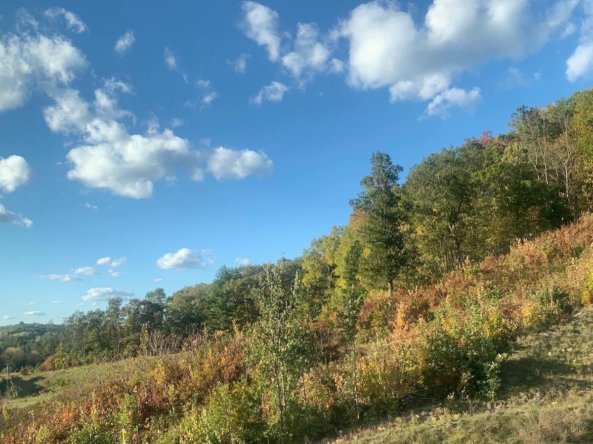 Fall foliage in Wisconsin, 10/16/21