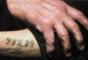 Мужские татуировки на руке (у заключенного Освенцима)