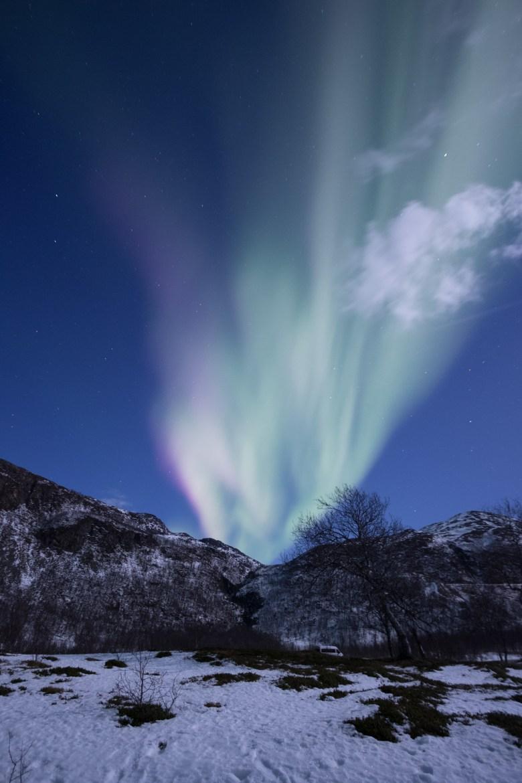 arctic-explorers-13