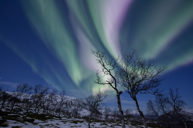 arctic-explorers-25
