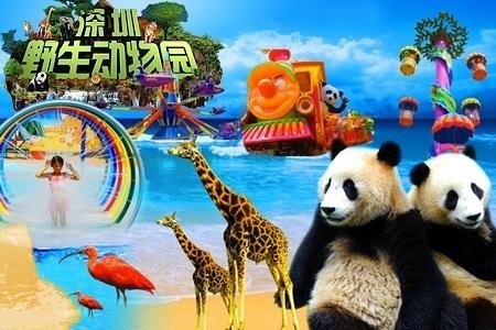 Hasil gambar untuk Safari Park shenzhen