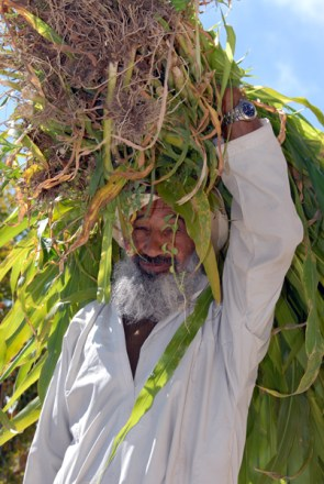 Omani farmer, photo courtesy of Elite Tourism, Oman