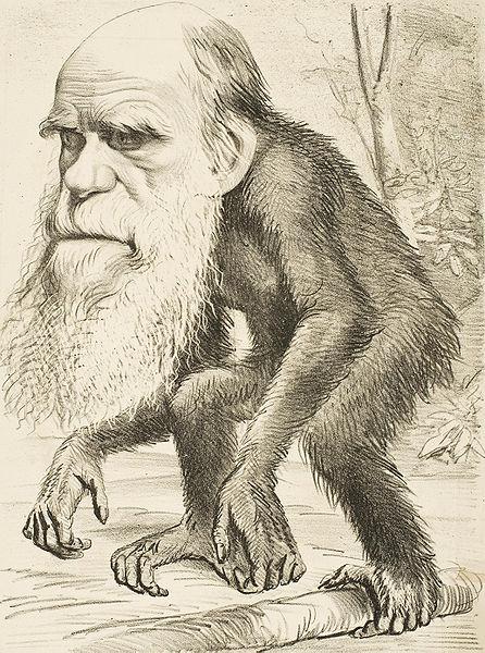 Teori penciptaan dan evolusi (2/2)