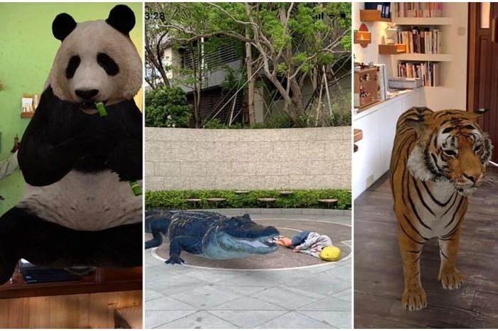 Google搜尋AR動物︳Google隱藏版功能教學,Android和iPhone手機召喚3D動物