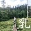 北八ヶ岳の初心者向け登山コース、白駒池経由のニュウへ行ってきました。