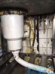 兵庫県神戸市東灘区森北町  水道水漏れ修理  排水トラップ水漏れ修理  排水つまり修理  ドレンクリーナー