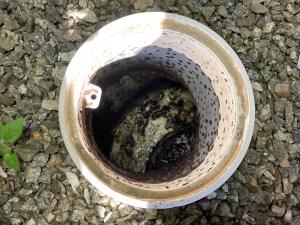 泉佐野市日根野で排水桝を詰まらせたら山川設備にお任せ下さい。
