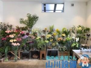 東大阪市の石切で花屋と言えばGreen Grassさん