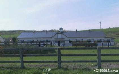 繁殖牝馬用厩舎