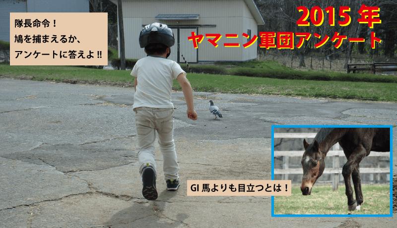 2015年ヤマニン軍団アンケート
