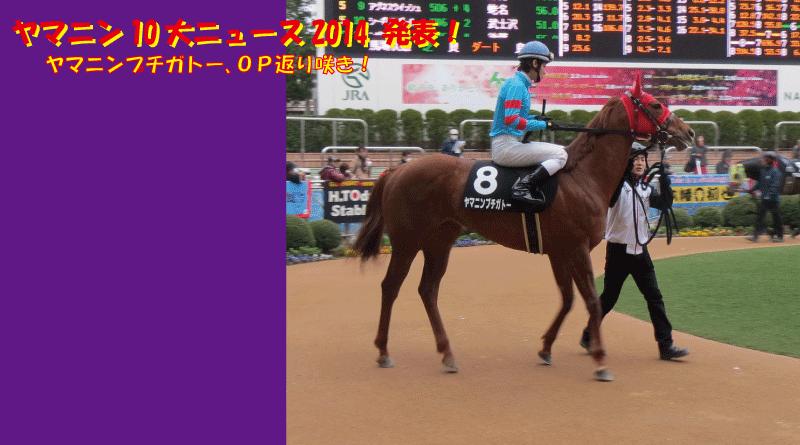 ヤマニン10大ニュース_2015