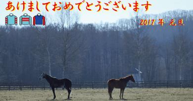 謹賀新年2017・冬の新和育成場