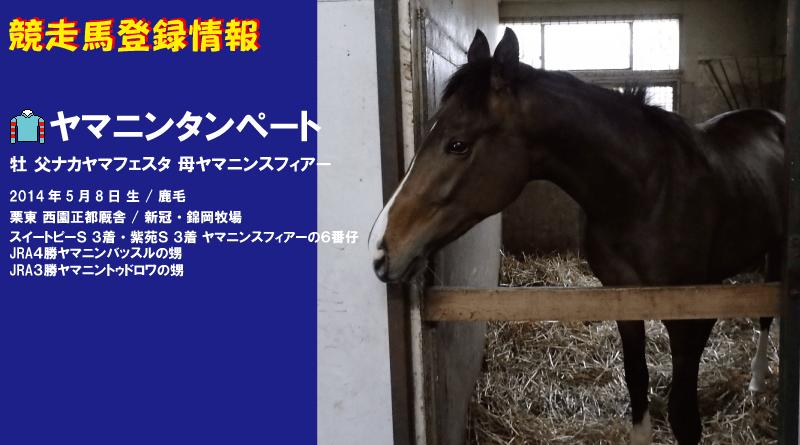競走馬登録・ヤマニンタンペート