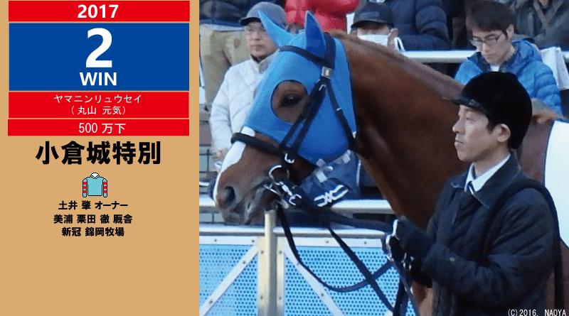 2017年2勝目・ヤマニンリュウセイ