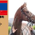 2017年4勝目・ヤマニンバンタジオ