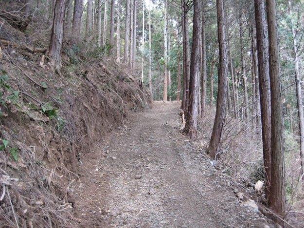 森林作業道#2( 道幅 2.5m ) | やまさ育林