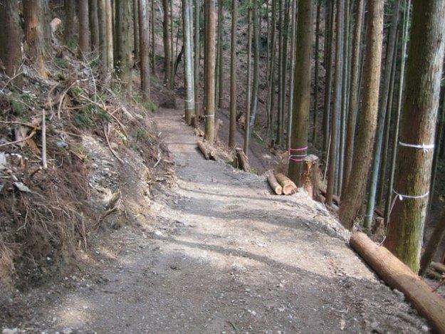 森林作業道作設#6( 道幅2.5m )| やまさ育林
