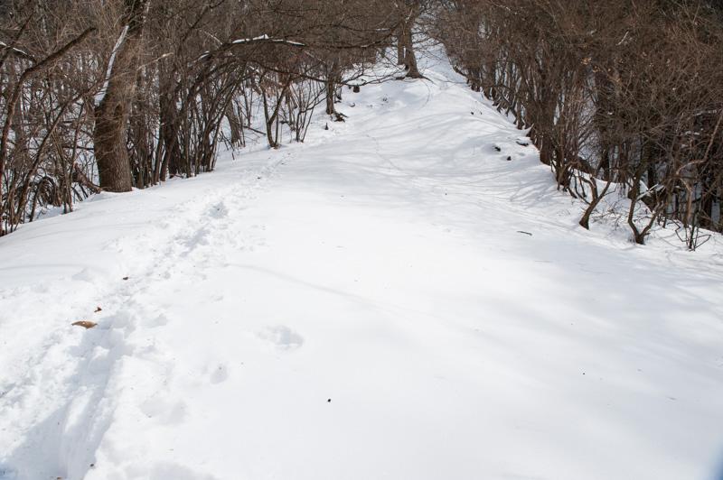 最初の雪山は低山から