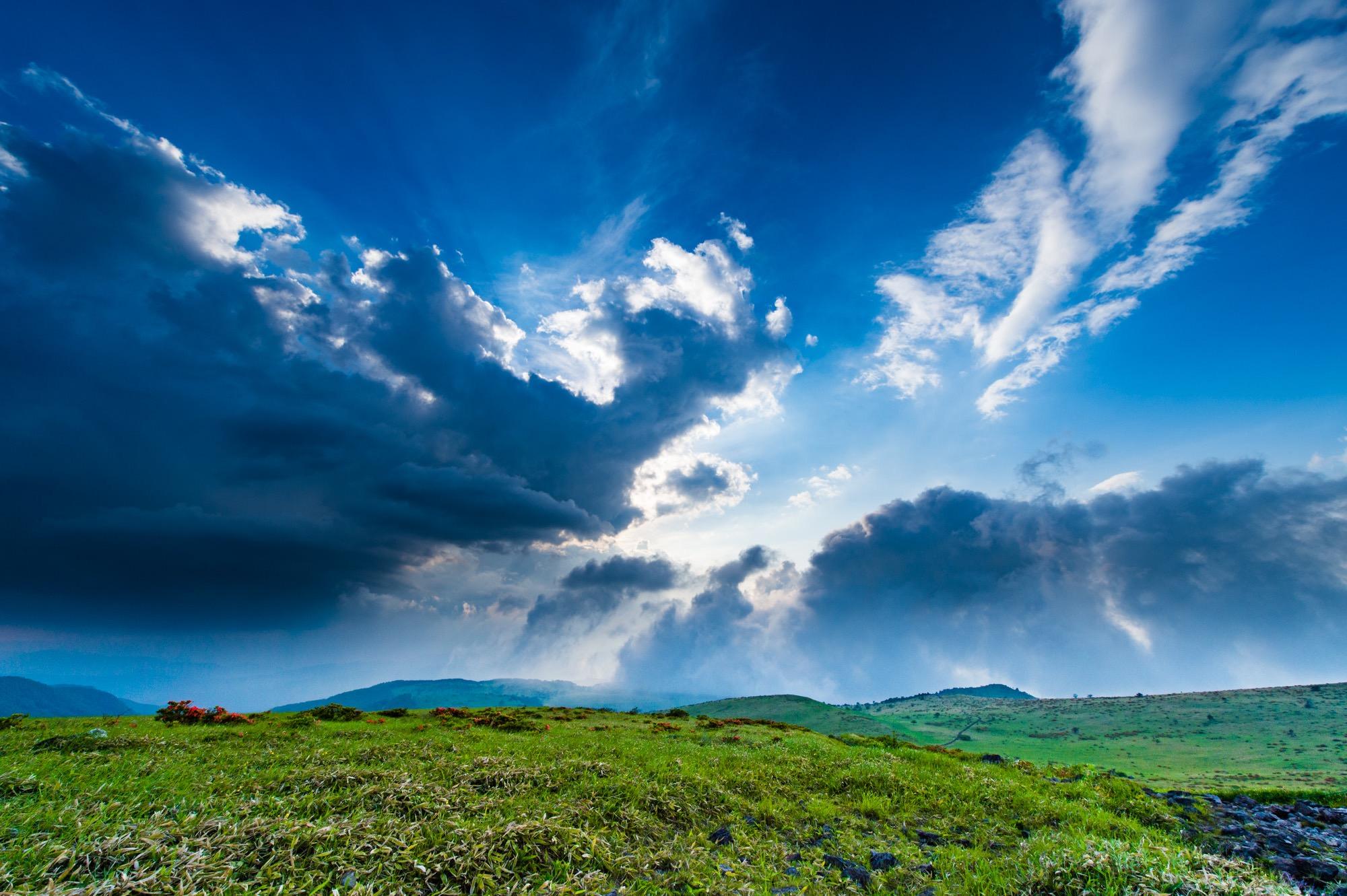 空が近い霧ヶ峰高原